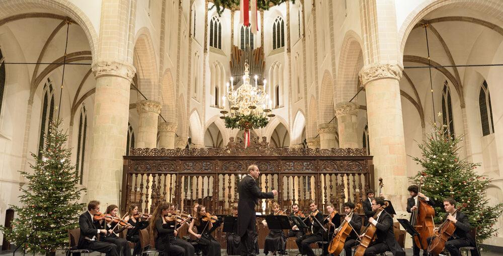 Ciconia Consort, Den Haag