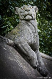 Animal Wall Cardiff