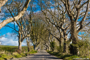 Bregagh Road, Kingsroad uit Game of Thrones