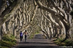 The Dark Hedges, Noord-Ierland