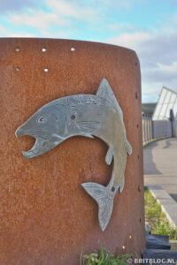 Zalm op de wandelroute door Hull