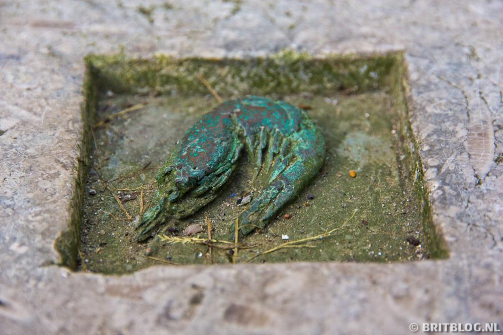 Shrimp, Seven Seas Hull Fish Trail
