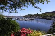 Boats moored at Tarbert on Loch Fyne, Kintyre, Argyll